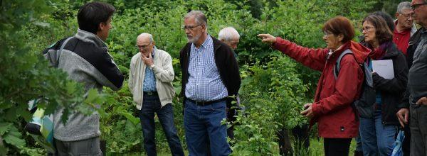 Visite de la RNR entre Nature Midi-Pyrénées et le syndicat Haute-Garonne Environnement