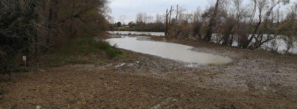 La Réserve naturelle régionale Confluence Garonne-Ariège et les collectivités partenaires s'engagent dans la restauration des zones inondables.