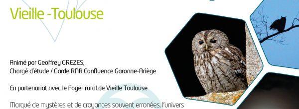 Chouettes et hiboux : visiteurs nocturnes de la RNR Confluence Garonne-Ariège