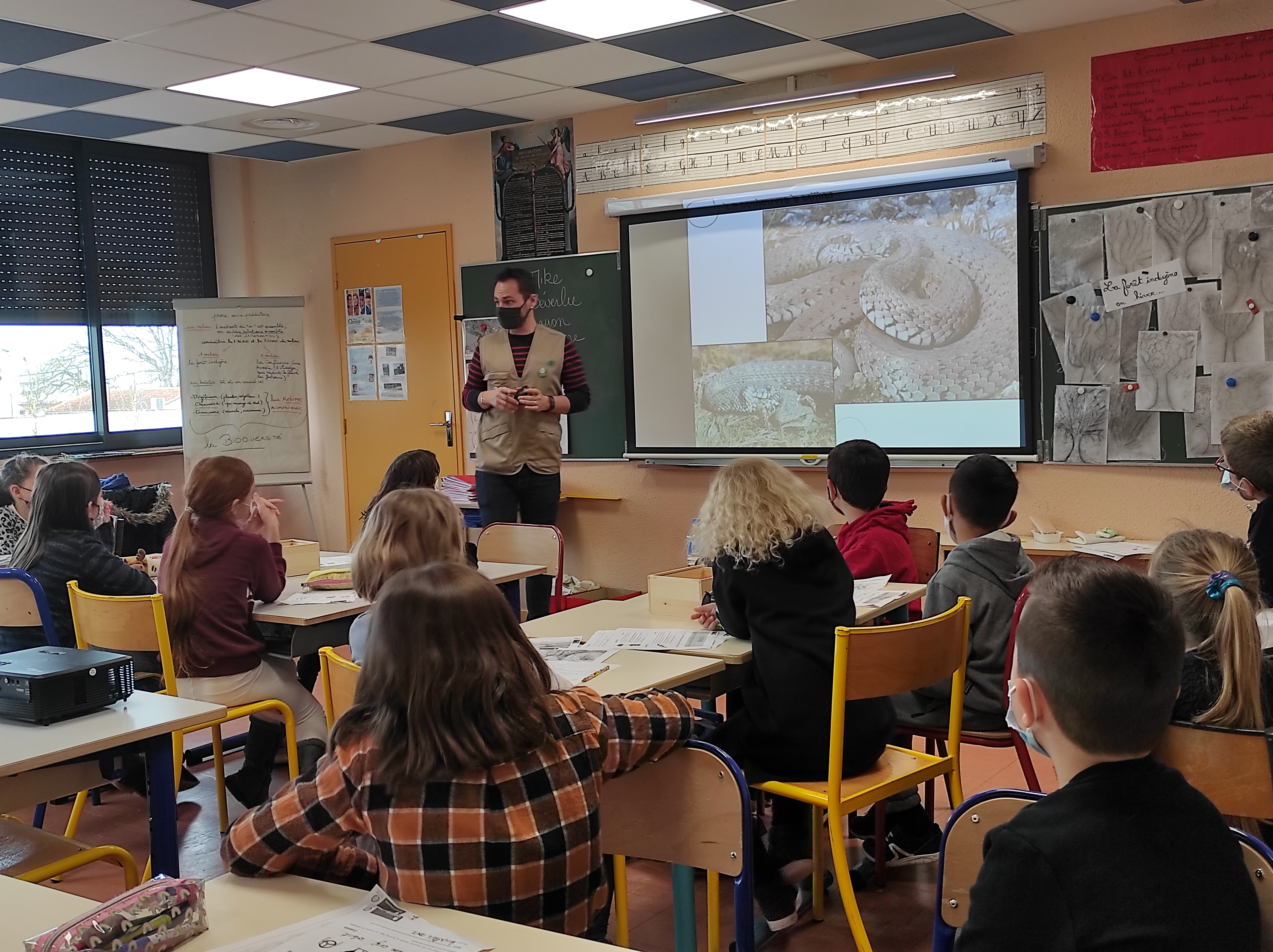 Le programme pédagogique de la RNR : retour sur les animations menées avec les établissements éducatifs de Portet-sur-Garonne
