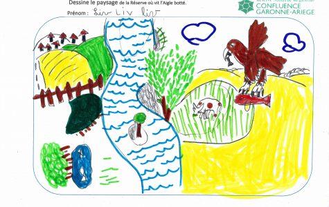 Animation scolaire : L'école La Prairie dessine la Réserve !
